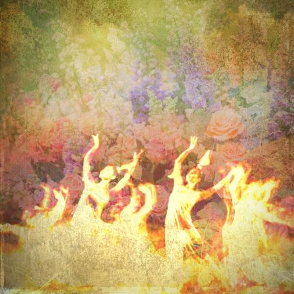 ブリスフルダンス