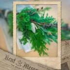 スワッグワークショップ by SAEDECO「森の香りの壁飾り」11/25(Sun) レポート