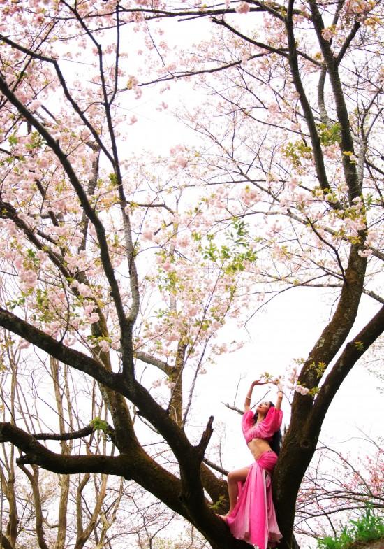 nourah-sakura